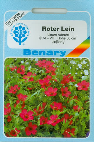 Roter Lein Linum rubrum (R274)