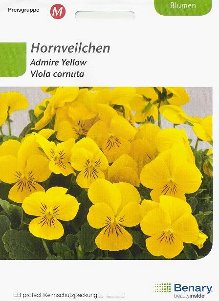 Admire Yellow Viola cornuta BY M