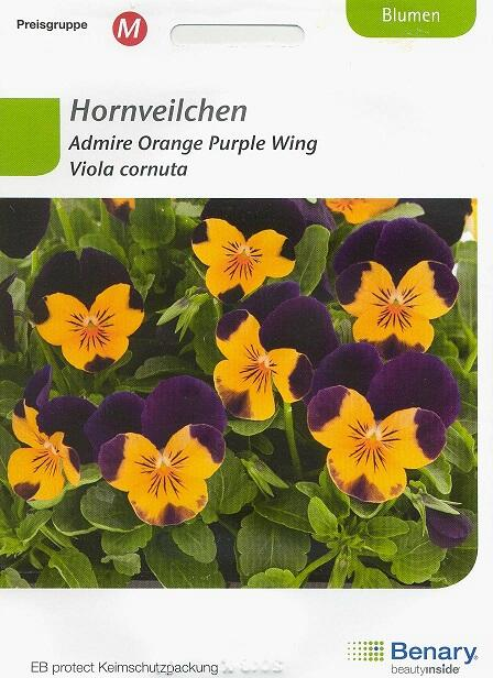 Admire Orange Purple Wing Viola cornuta BY M