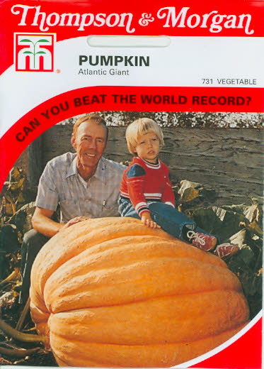 Rekordkürbis Pumpkin (Giant) Atlantic Giant T&M UK