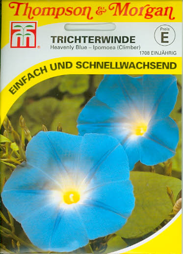 Trichterwinden Heavenly Blue Morning Glory