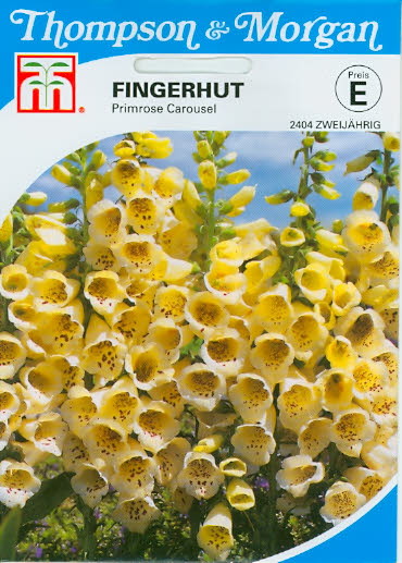 Fingerhut Digitalis purpurea Primrosen Carousel T&M
