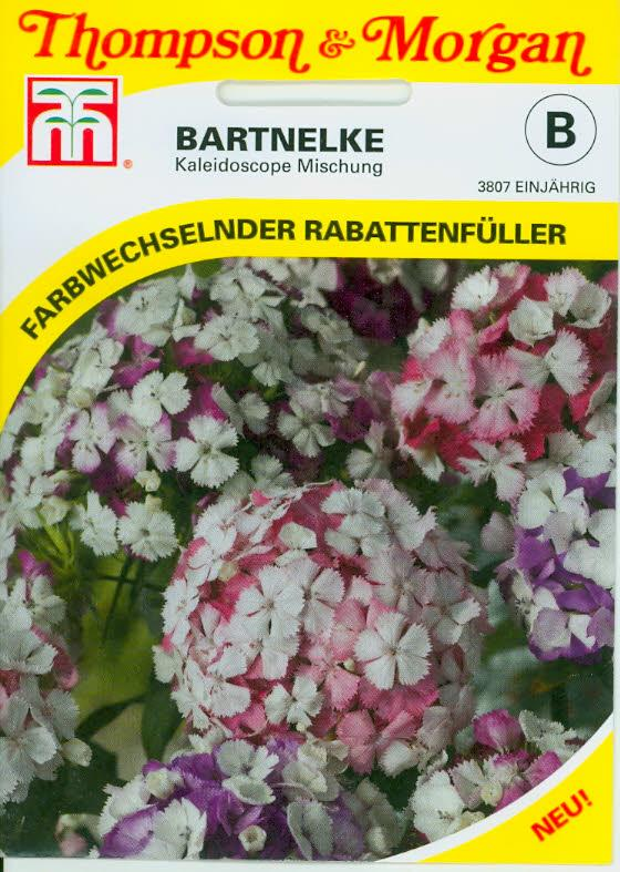 Dianthus barbatus Kaleidoscope Mixed NEW einj. TMB