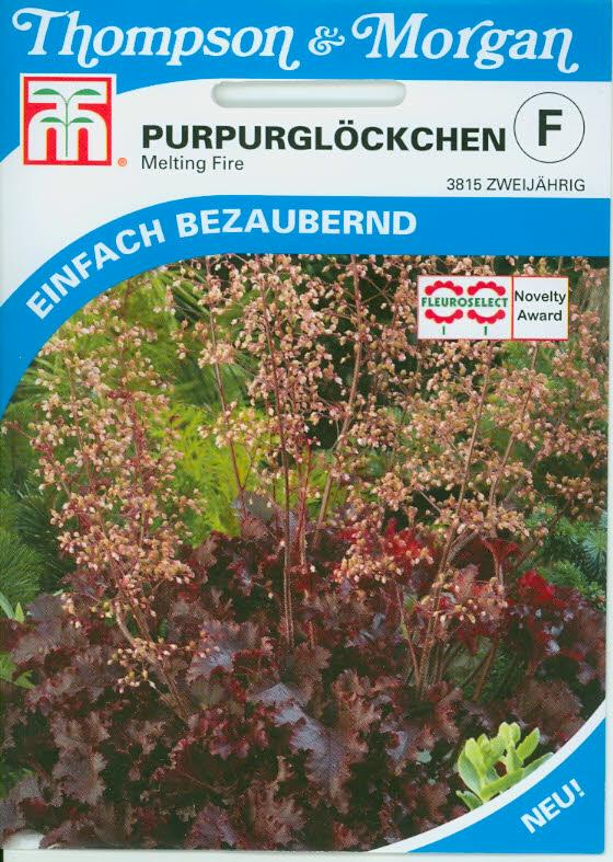 Heuchera Melting fire NEW mehrj. TMF