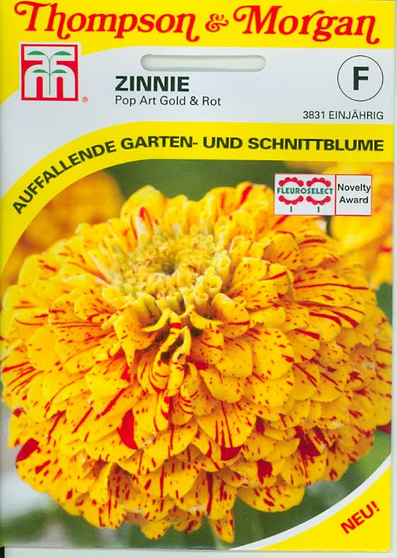 Zinnia elegans 'Pop Art' Golden & Red NEW einj. TM