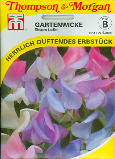Wicken Gartenwicken Elegant Ladies NEU einj. T&M