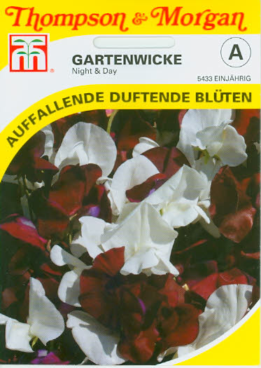 Wicken Gartenwicken Night & Day NEU einj. TMA
