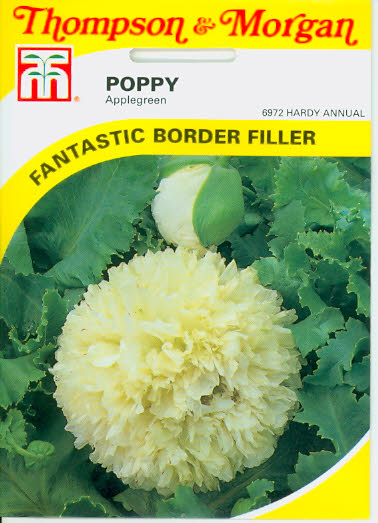 Mohn Poppy Applegreen T&M UK