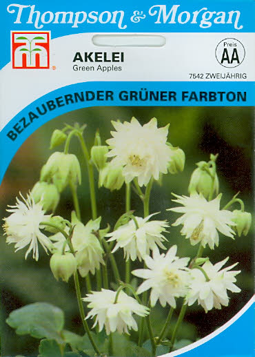 Akelei Green Apples NEU Aquilegia