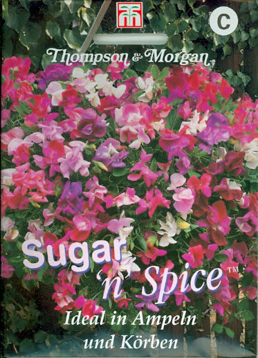 Wicken Gartenwicken Sugar 'n' Spice einj.Duftwicken