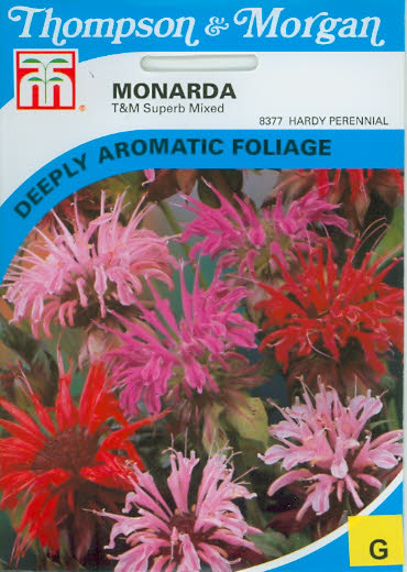 Indianernessel Monarda Superb Mixed T&M UK
