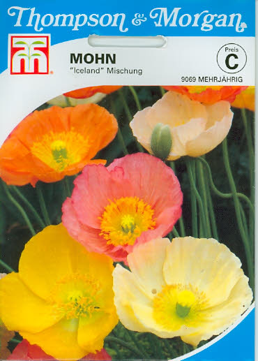 Mohn Iceland Mischung