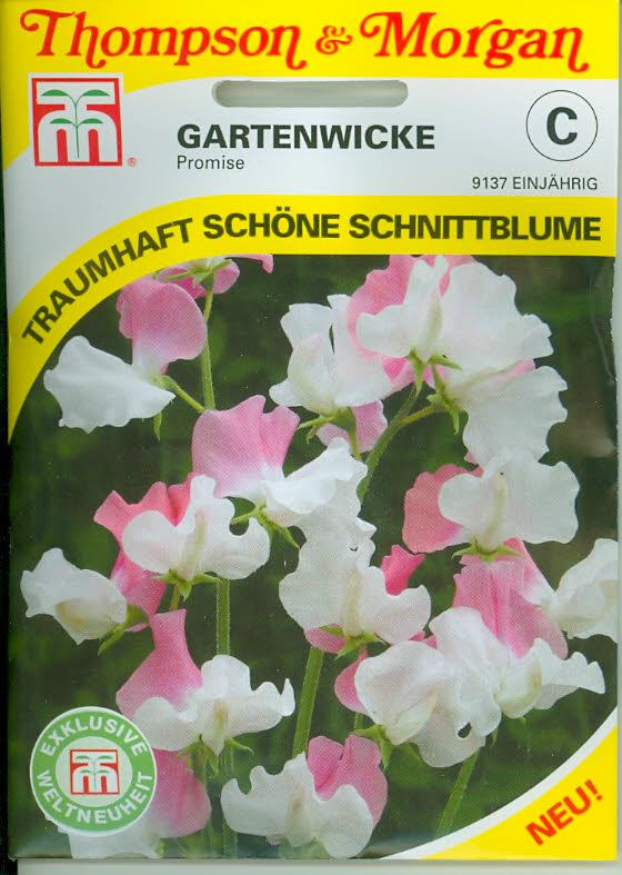 Wicken Gartenwicken Sweet Pea Promise NEW einj. TMC