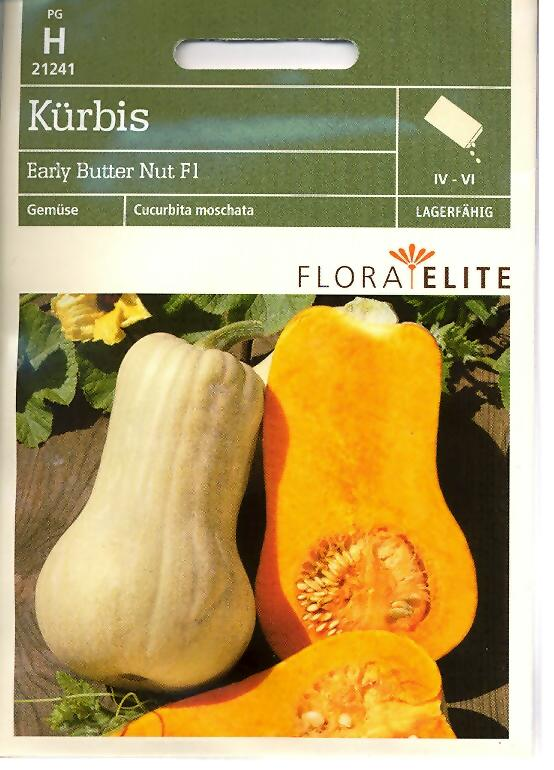 Kürbis Early Butter Nut F1 MoschusKürbis Butternut (FE h)