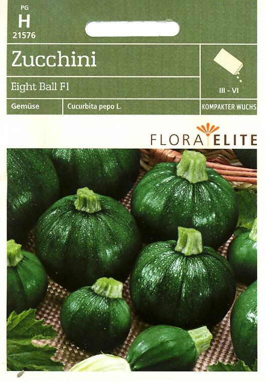 Zucchini Eight Ball F1 Cucurbita pepo L. (FE h)