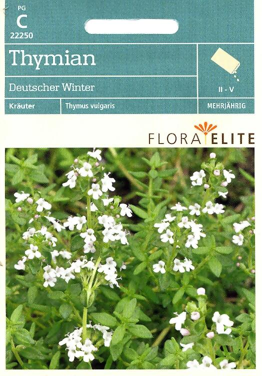 Thymian Deutscher Winter Thymus vulgaris (FE c)