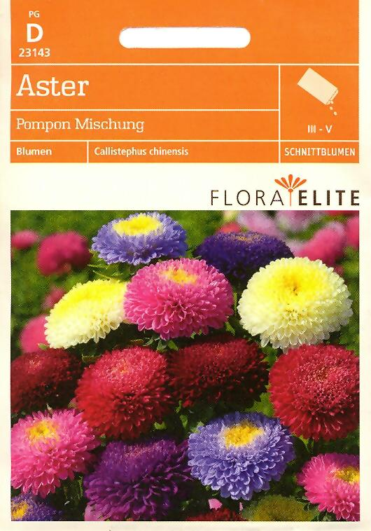 Aster Pompon Mischung Callistephus chinensis (FE d)