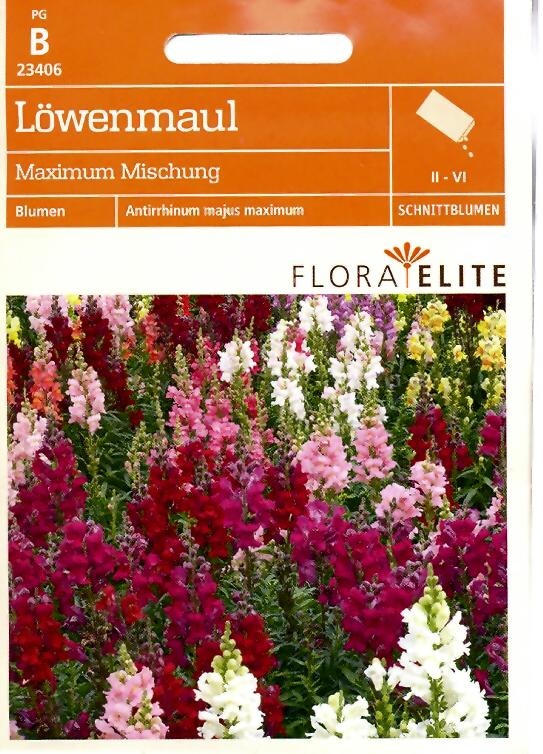 Löwenmaul Maximum Mischung Antirrhinum majus maximum (FE b)