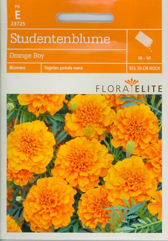 Studentenblumen Orange Boy Tagetes patula nana (FE e)