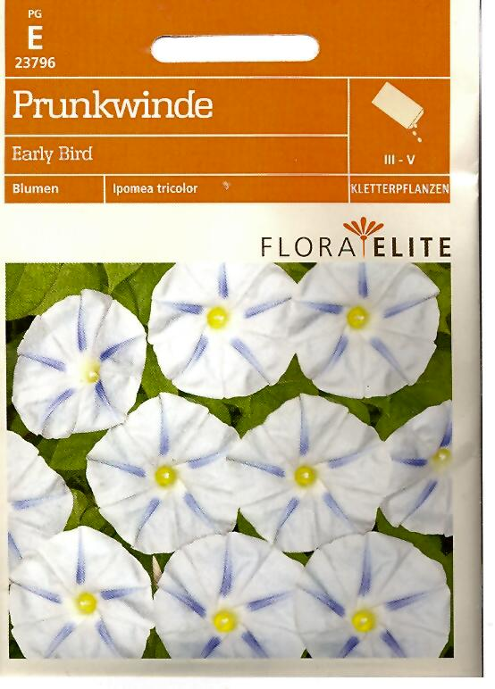 Prunkwinden Early Bird Ipomoea tricolor (FE e)