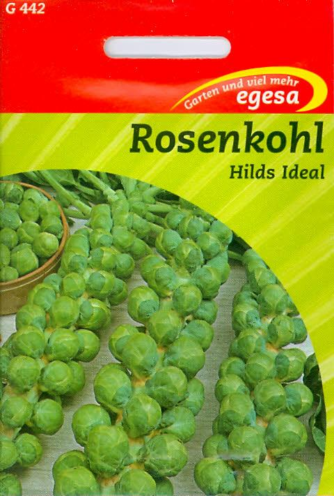 Rosenkohl Hilds Ideal Sprossenkohl