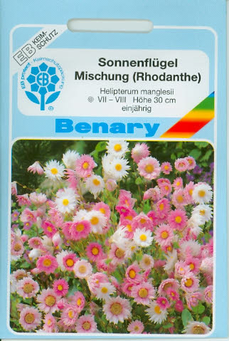 Sonnenflügel Helipterum manglesii Mix BY E