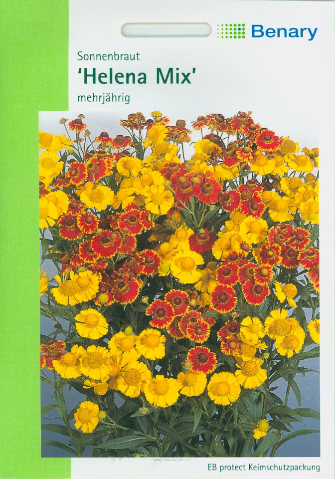 Helenium autumnale Sonnenbraut Helena Mix (BY L) BellaBenary