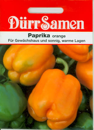 Paprika Blockpaprika orange DÜ K