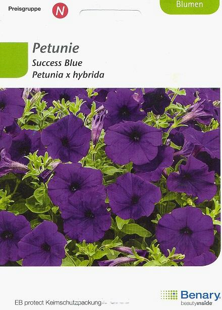 Success Blue Petunia hybrida BY N