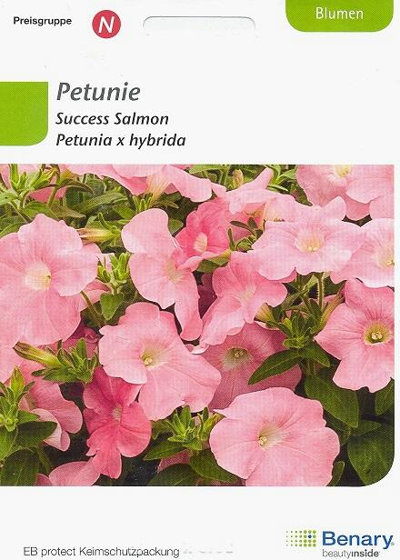 Success Salmon Petunia hybrida BY N