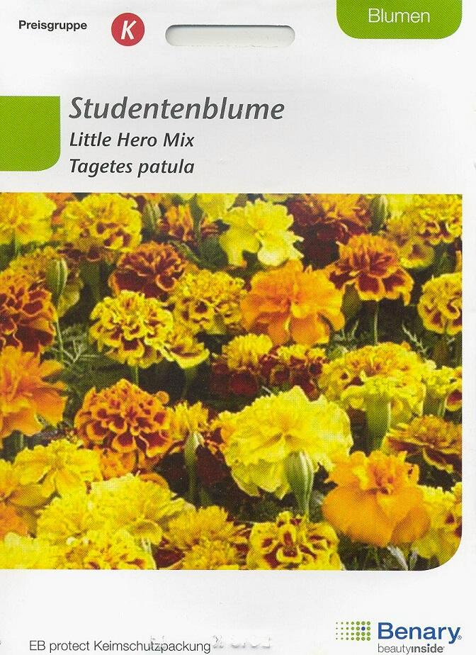Little Hero Mix Tagetes patula BY K