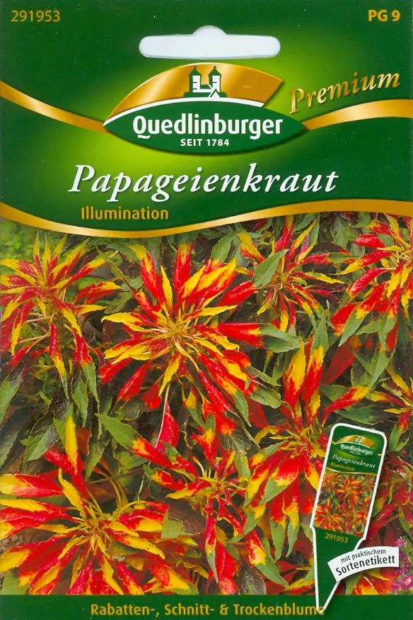 Papageienkraut, Illumination (Q 9)