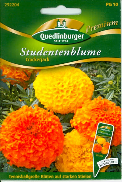 •Studentenblumen, Crackerjack PR10
