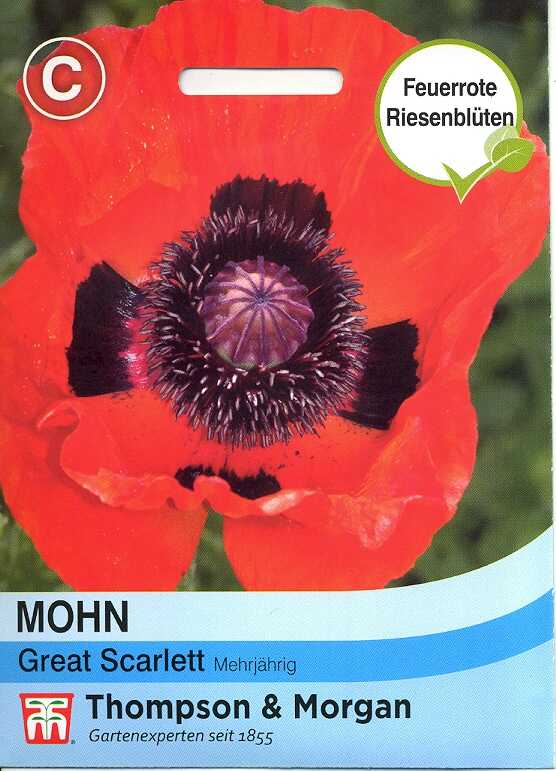 Mohn Great Scarlet (TM C)
